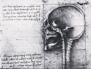 Leonardo-19057r-detail